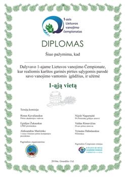 DIPLOMO DIZAINO KURIMAS