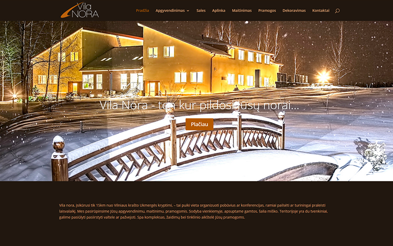 interneto-svetainiu-grafinio-dizaino-kurimas-vila-nora-lt