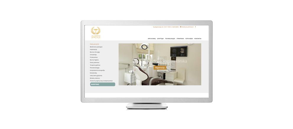 dizaino-kurimas-svetainems-sanus-klinika-1